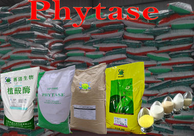 China Alimentação animal pulverizada amarelada Eco-Amigável 50000u/g Szym-PHY50P do Phytase distribuidor
